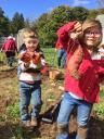 Harvest 10.jpg -